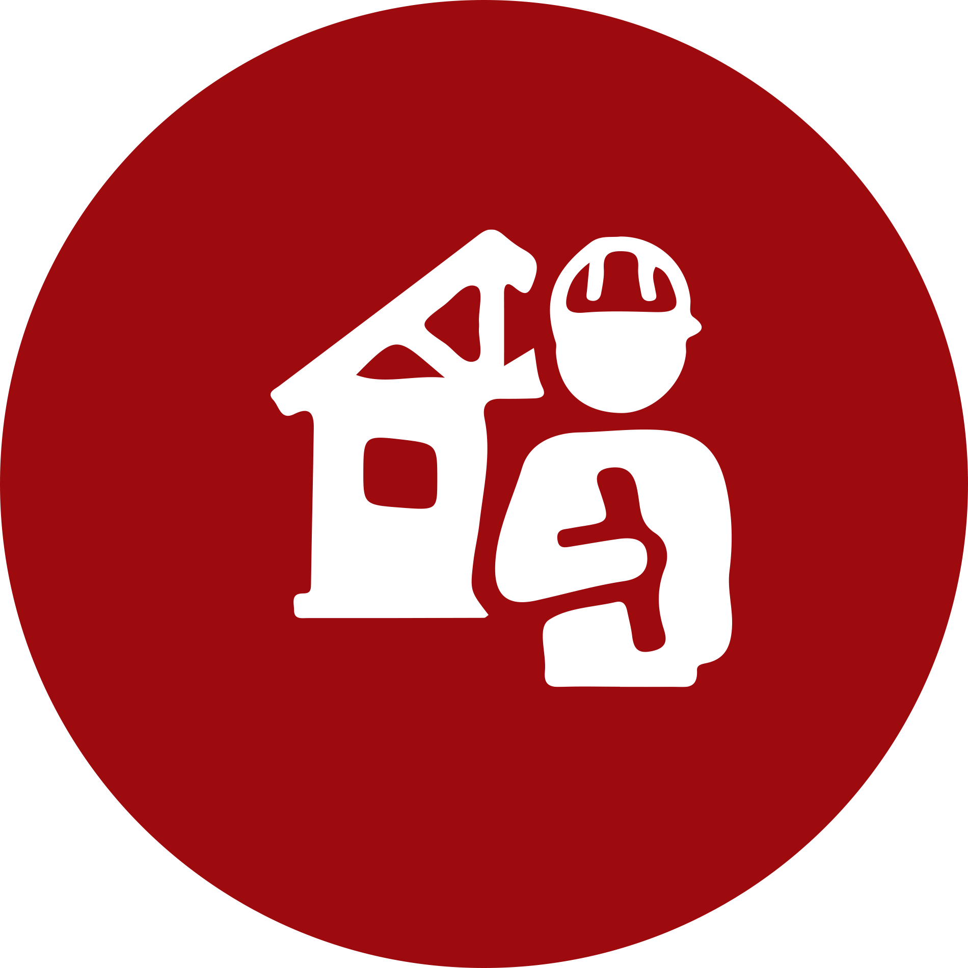new construction phase inspection icon